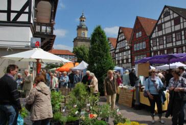 Bauernmarkt in Rinteln anlässlich des Felgenfestes im Wesertal am 02. Juni 2013