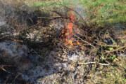 Niedersächsische Brennverordnung tritt zum 31. März außer Kraft: Keine Brenntage mehr.