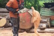 Kreativität mit der Kettensäge – Kai Gerulat Chainsaw Carving