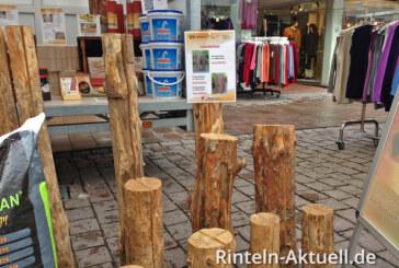 Vom Waldraubbau zur Forstwirtschaft: Vortrag am 01.02.2014