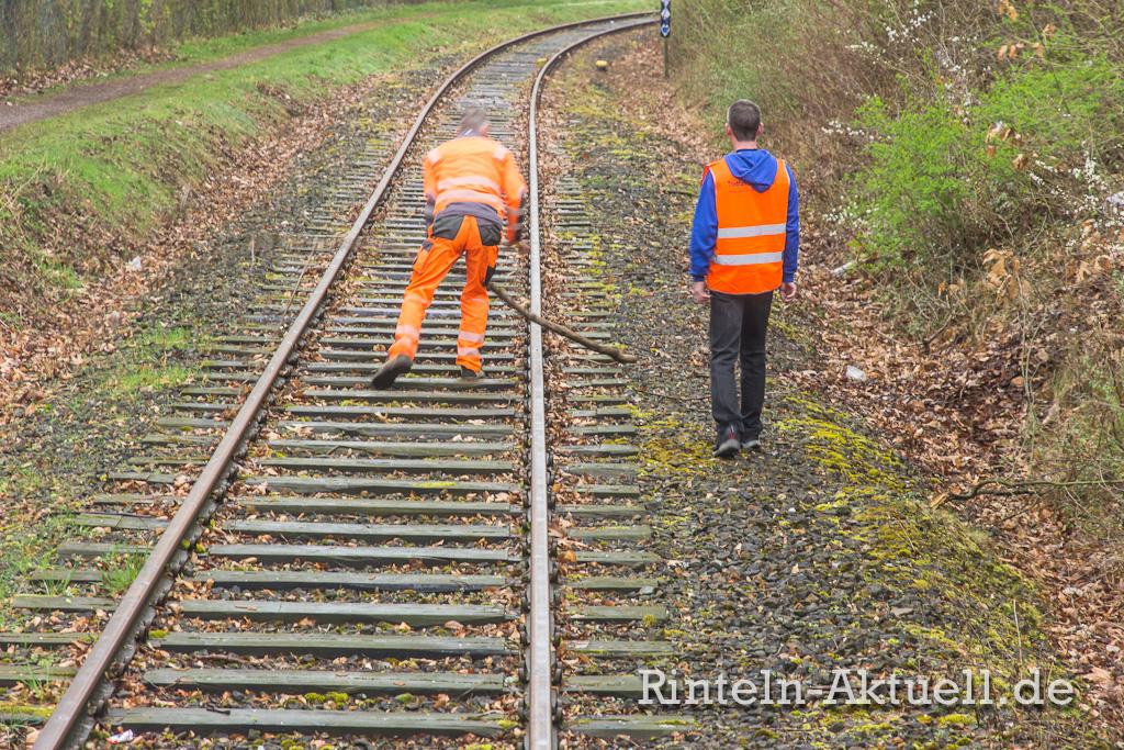Einsatz: Auf dem Gleis liegende Äste müssen entfernt werden. Sie wurden absichtlich dort platziert.