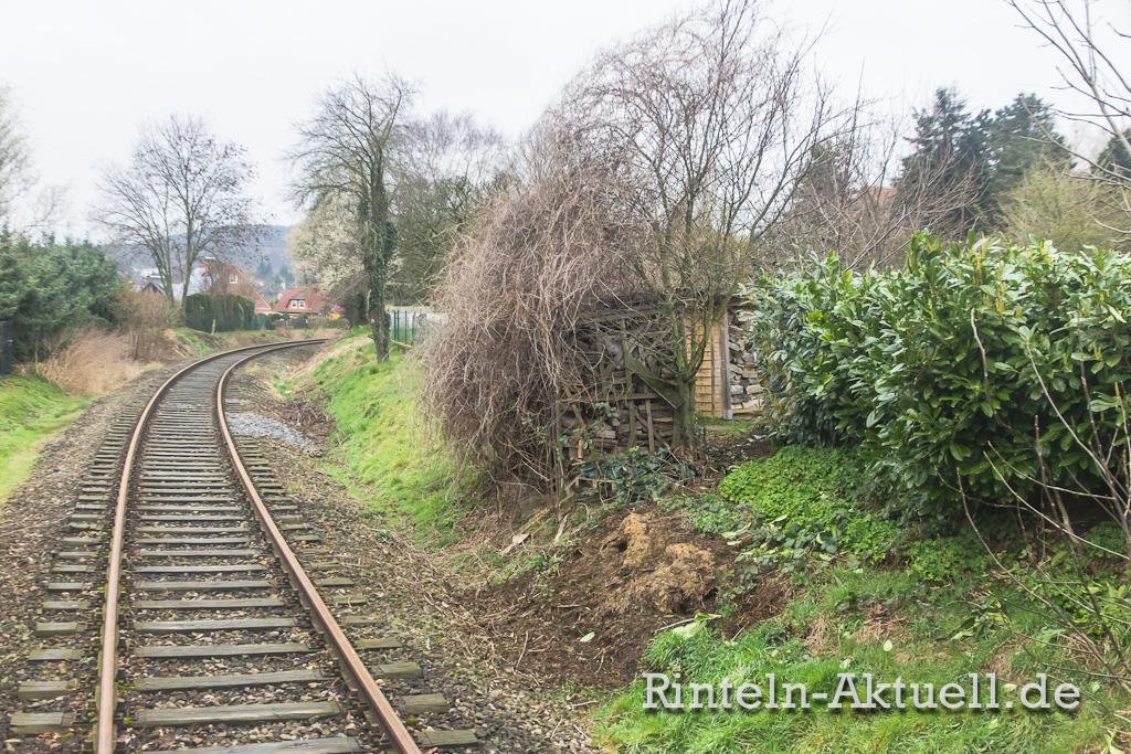 Leider kein Einzelfall: Grünschnitt und Abfall werden einfach entlang der Bahnstrecke entsorgt. Manch einer baut sogar einen Schuppen auf dem Bahngrundstück...