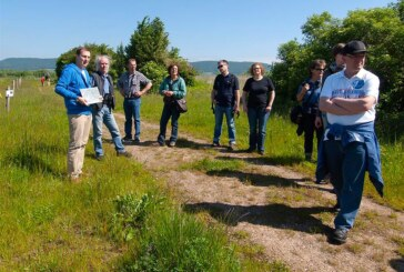 NABU Rinteln führt Auetaler Naturschützer durch das Kleinod an der Weserschleife