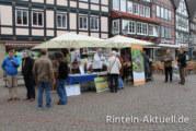 Samstag gleich Blumentag: Neue Verkaufsrunde für den Rintelner Blumenzauber