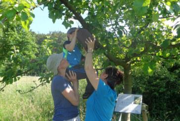 Max Meise macht blau: Naturschutzjugend beteiligt sich an Projekt der NAJU Niedersachsen