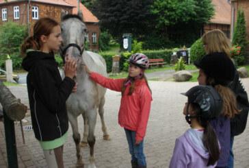Sommerferienspaß 2014 in Rinteln: Anmeldung startet in Kürze