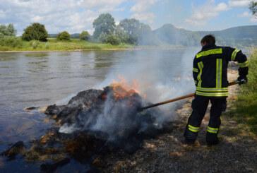 Strohfeuer am Doktorsee: Feuerwehr löscht auch ohne Löschwasser