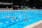 Das 24-Stunden-Schwimmen von Obernkirchen: DLRG Ortsgruppe Rinteln schafft 300 Kilometer
