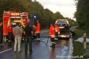 Heisses Ende einer Probefahrt: Renault brennt auf der Umgehungsstraße bei Steinbergen
