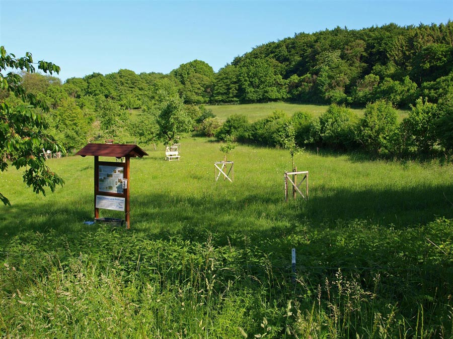 Der NABU Rinteln wurde für die Streuobstwiese Hohenrode ausgezeichnet.