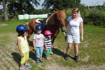 """Ferientage auf dem """"Twelenhof"""" für 16 Rintelner Kinder: Hoch zu Ross durch Feld und Flur"""