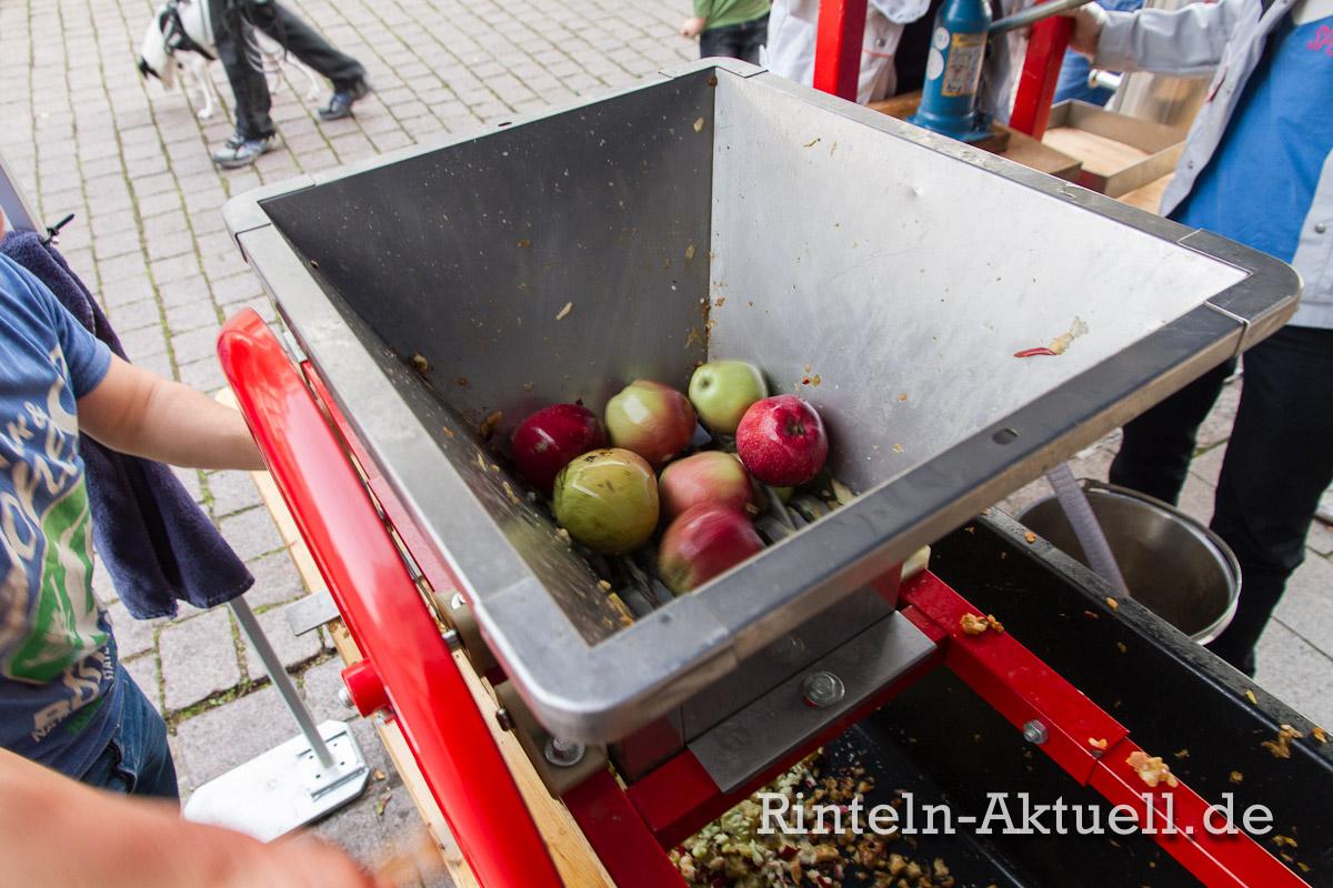 06-rinteln-apfelfest-apfeltage-aktuell-boskop-marktplatz