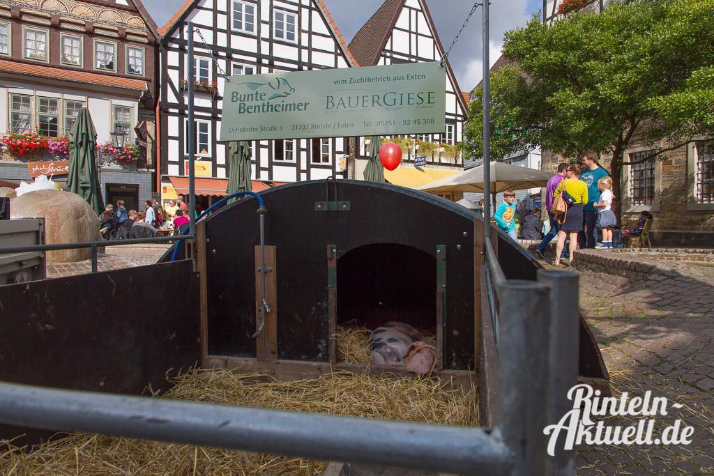 17 rintelnaktuell oeko bauernmarkt innenstadt zentrum wochenende
