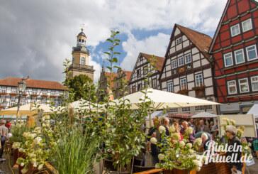 Gutes aus der Region: Bauernmarkt, Felgenfest und verkaufsoffener Sonntag am 7. Juni 2015