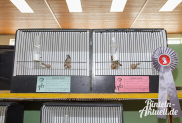 Von Fink bis Papagei alles dabei: Weserbergland-Vogelschau in der Mehrzweckhalle Engern