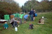 Max Meise macht blau: NAJU pflanzt Schutzhecke auf Streuobstwiese Hohenrode