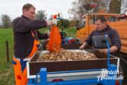 Rinteln erblüht mit Hilfe aus den Niederlanden