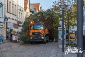 05 rintelnaktuell weihnachtsbaum adventszauber marktplatz tanne