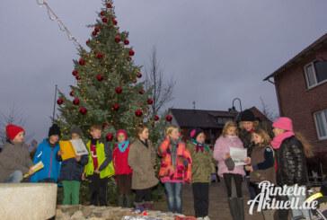 Festlich geschmücktes Steinbergen: Weihnachtsbaum am Backhaus glänzt und leuchtet