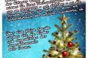 Aus Weihnachtsbäumen wird Osterfeuer: Tannenbaumaktion der Jugendfeuerwehr Exten