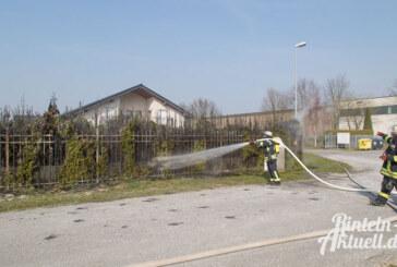 Industriegebiet Süd: Unkraut vernichtet, Hecke abgebrannt