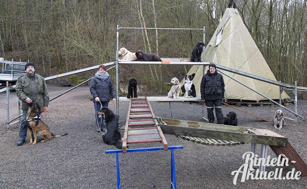 02-rintelnaktuell-rettungshundestaffel-weserbergland-training
