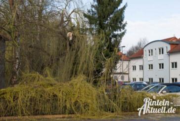 Stürmische Zeiten: Orkan Niklas hielt die Region in Atem