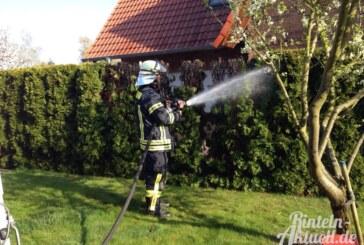 Rinteln-Nord: Bei Unkrautbeseitigung fängt die Hecke Feuer