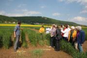 Schaumburger Züchter zeigt erstmals seinen Zuchtgarten