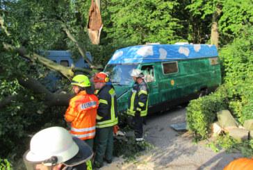 Baum stürzt auf Wohnmobile am Stellplatz bei Schloss Bückeburg