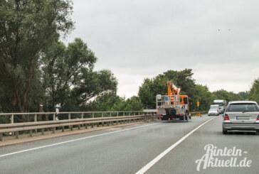 Straßenmeisterei schneidet Bäume und Weiden an Umgehungsstraße zurück