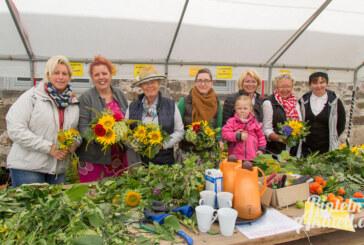 7. Sonnenblumenfest im Kloster Möllenbeck: Spiel, Spaß und Musik
