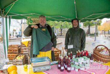 Wetterfeste Teilnehmer beim Rintelner Apfelmarkt