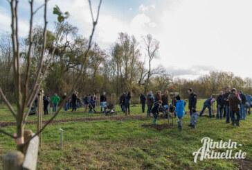 22 Apfelbäume im Generationenpark gepflanzt