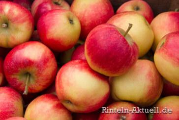Frisch gepresst: Lions Club und NABU laden zum Apfelfest in Hohenrode ein