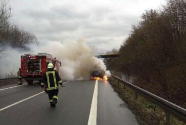 B65 bei Bückeburg: Mercedes ausgebrannt