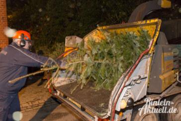 Ast-Rein: Feuerwehr Engern verarbeitet beim Tannenbaumschreddern selbst große Bäume zu Späne