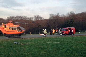 Schwerer Unfall bei Holzarbeiten in Friedrichswald