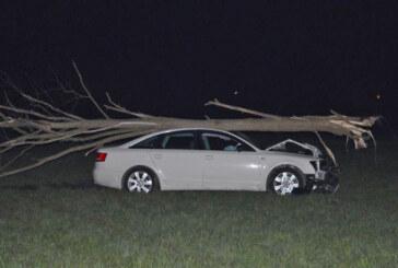 Verfolgungsjagd mit 160 km/h endet mit Baum auf Audi-Dach