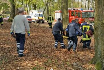 Beim Klippenturm: Feuerwehr Rinteln rettet verletzte Frau von Wanderweg