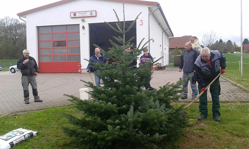 01-rintelnaktuell-feuerwehr-steinbergen-weihnachtsbaum-tanne