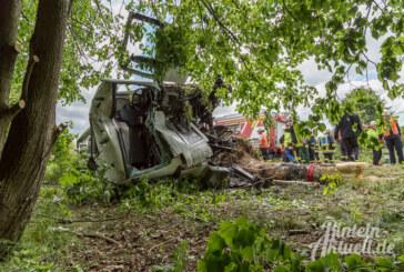 Schwerer Unfall auf B238: LKW entwurzelt Baum, Fahrer schwer verletzt