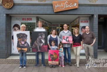 Hunde, Katzen und ein Huhn beim Wettbewerb von Photo Struck