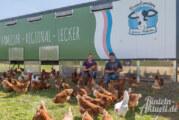 Neu in Rinteln: Brandsmeiers Genuss-Hofladen mit Eiern, Milch und Fleisch aus eigener Erzeugung