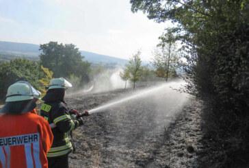 2000 Quadratmeter Wiese in Schaumburg verbrannt