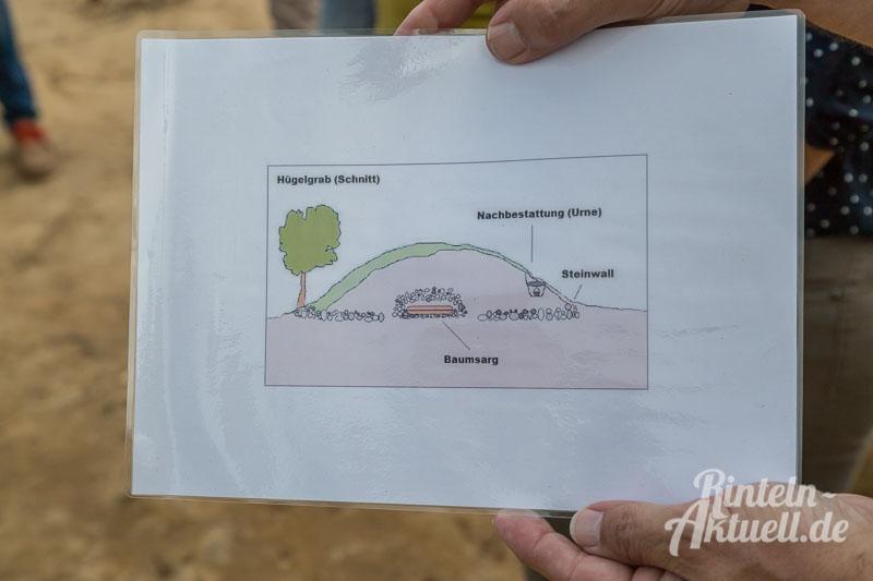 01-rintelnaktuell-moellenbeck-bronzezeit-grabstaette-archaeologie-ausgrabungen-wald