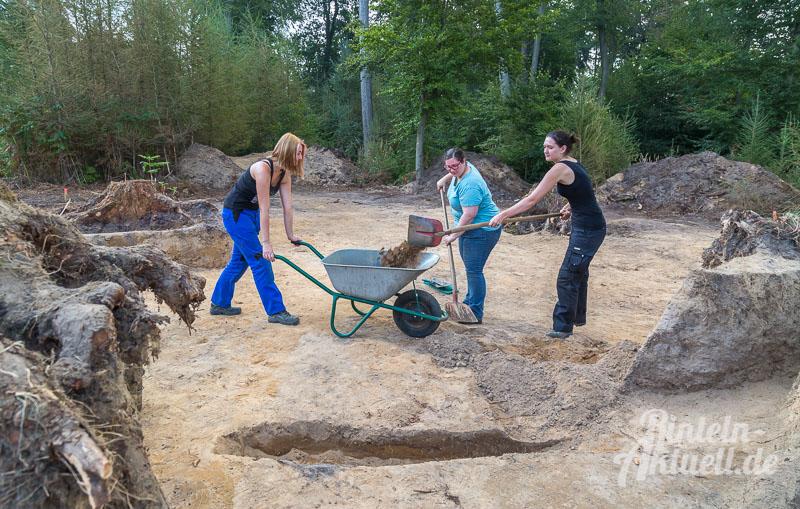 06-rintelnaktuell-moellenbeck-bronzezeit-grabstaette-archaeologie-ausgrabungen-wald