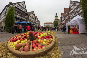 Leckere Früchte und wertvolles Wissen beim Rintelner Apfelmarkt 2016