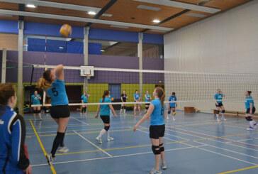 Volleyball: Anfänger und erfahrene Spieler gesucht