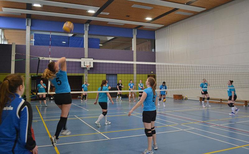 01-rintelnaktuell-volleyball-team-rinteln-sport